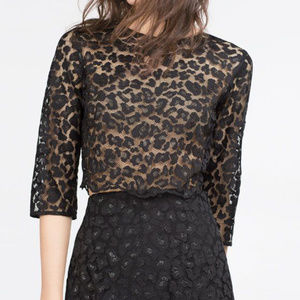 Zara black lace cropped top, S